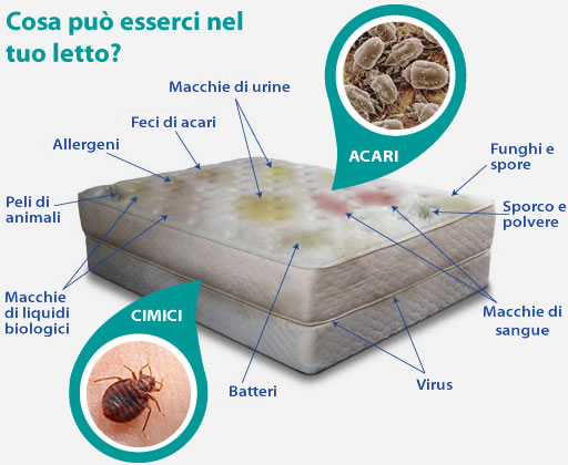 Mediterranea ekoservice s r l - Prurito diffuso a letto ...